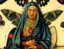 Flora Calabrese
